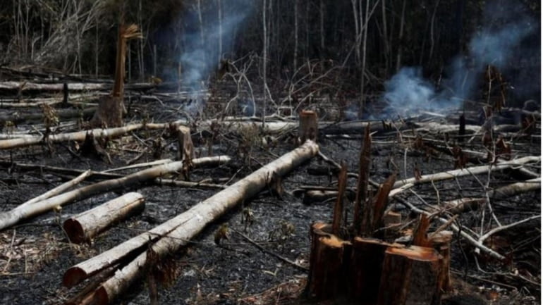 Bolsonaro launches a diplomatic offensive to defend against criticism for fires in the Amazon