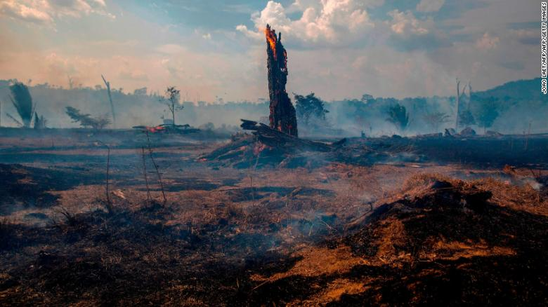Bolsonaro prohibits for 60 days the burning in all Brazil to fight fires in the Amazon