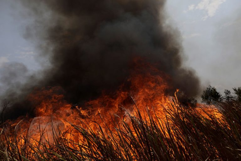 Brazil will accept all external help for fires in the Amazon as long as it can decide how to use it