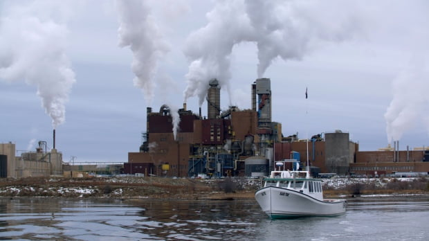 Pulp mill forecast debate continues
