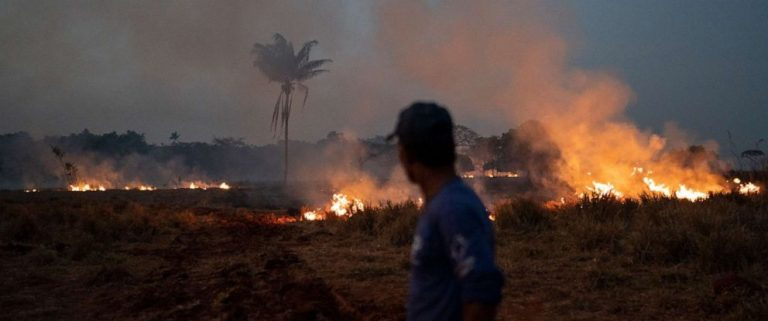The Brazilian Government confirms that it will send the Army to fight fires in the Amazon