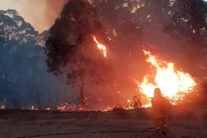 Western Vic fire 'almost contained'
