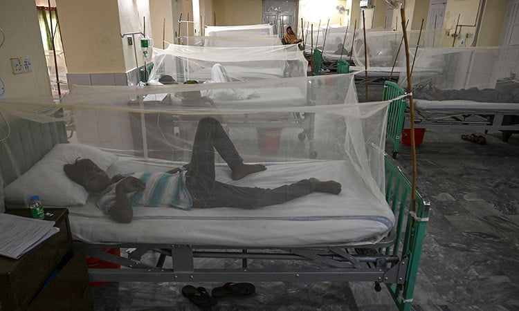 Pakistan starts a campaign against dengue after detecting more than 10,000 cases this year