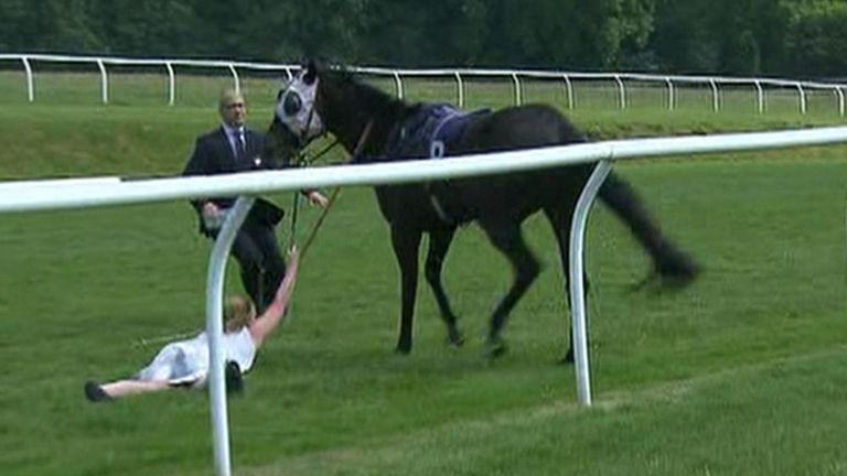 TV presenter tackles runaway race horse