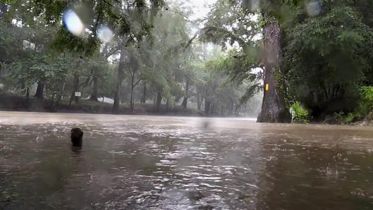 Two journalists killed as Alberto drenches the South