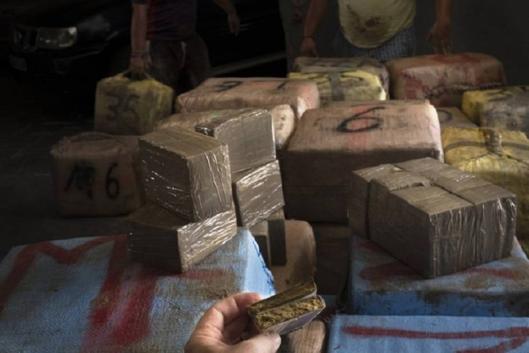 Paraguay dismantles a base dedicated to drug trafficking and destroys 28 tons of marijuana