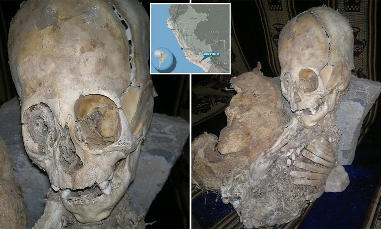 1,300-year-old bones may reveal secrets of pre-Incan society