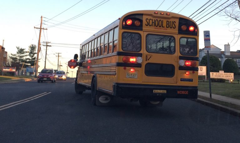 Action criticised for school bus changes