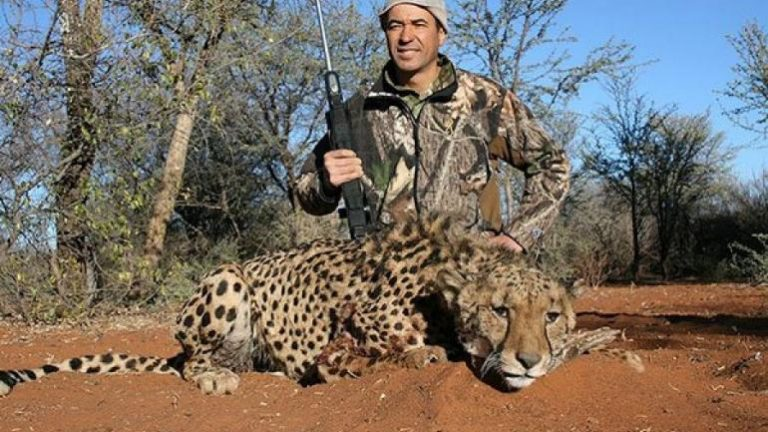 Big game hunting killed the biggest mammals