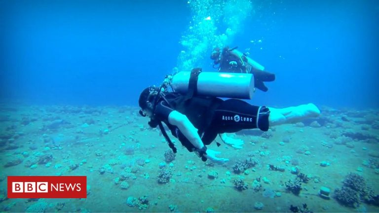 Deptherapy charity helps rehabilitate veterans with scuba-diving