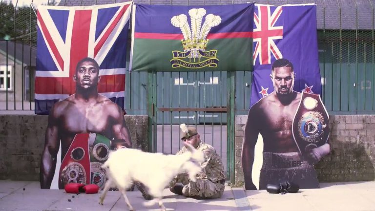 Joshua v Parker: Who does army goat Shenkin IV predict to win?