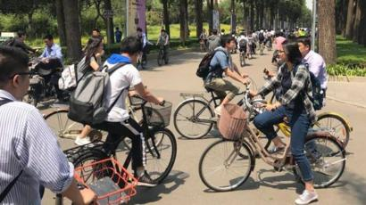 Putting the brakes on China's bike mountain