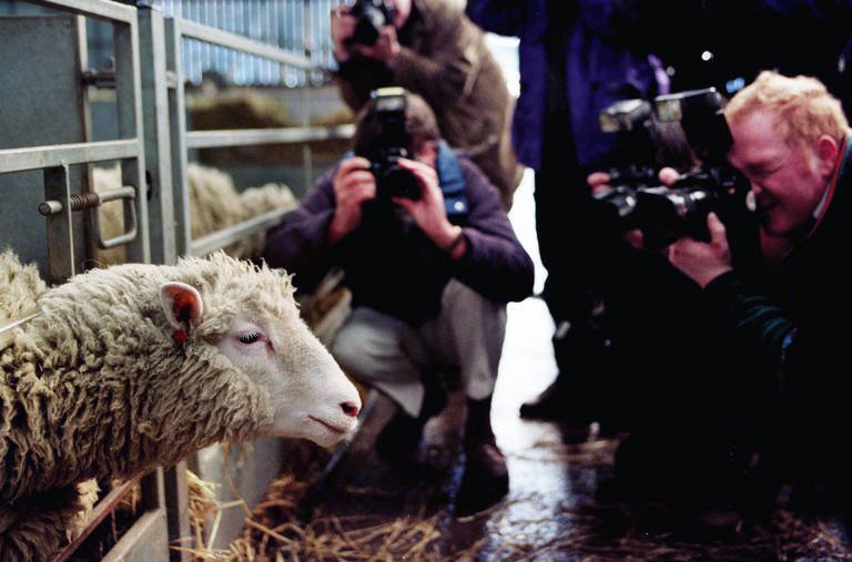 Scientist Behind Dolly the Sheep, a Key to Parkinson's Research, Has the Disease Himself