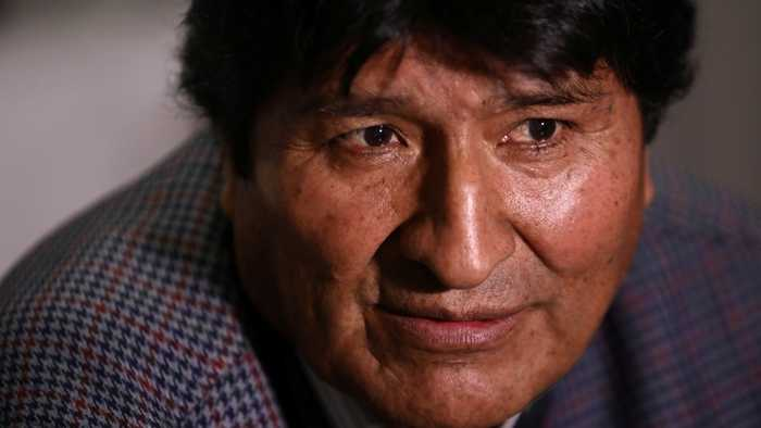 The Bolivian government will investigate almost 600 former senior officials of the Morales stage