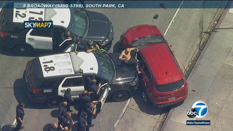 US police dog brings Los Angeles car chase to an end