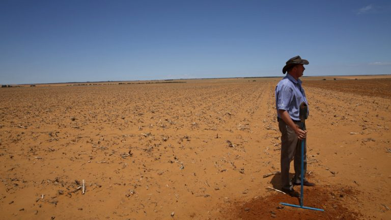 Australian Official Calls for Emergency Visas for White South African Farmers