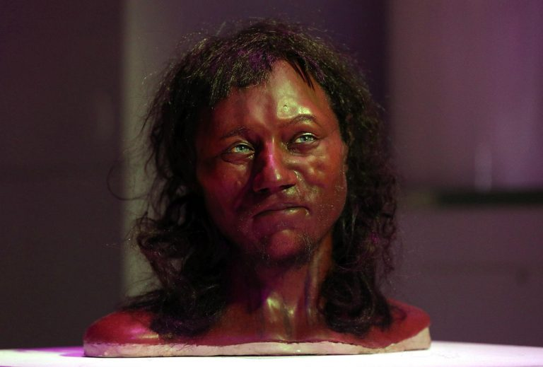 Cheddar Man and other stories you may have missed
