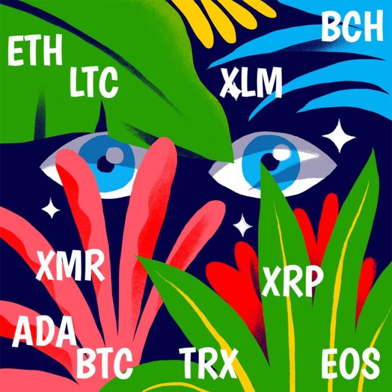 Cardano and Ethereum prices rise along with Bitcoin: will XLM continue?