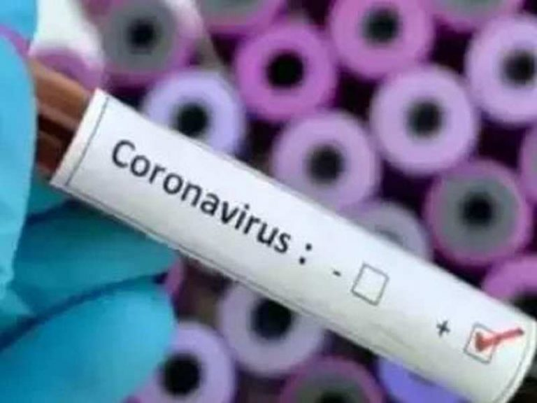 Germany increases the daily balance of the coronavirus with nine deaths and 378 cases in the last 24 hours