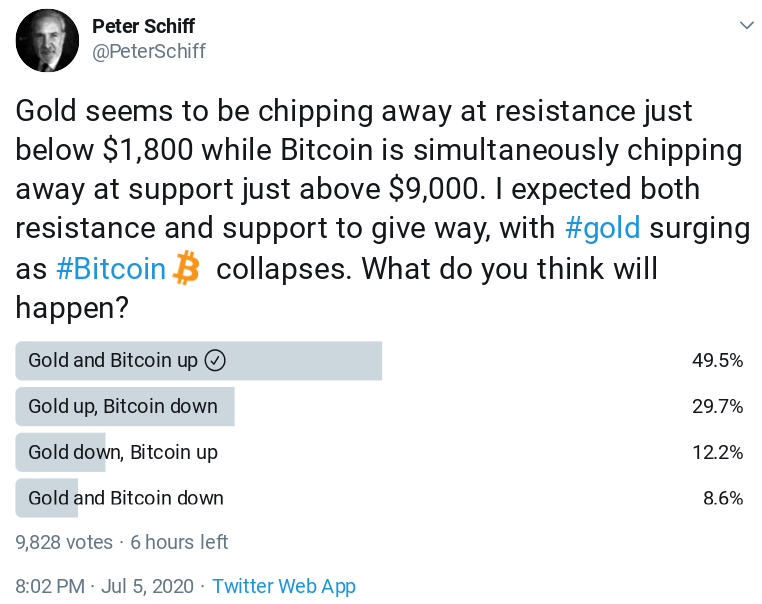 Results of Peter Schiff's Twitter survey