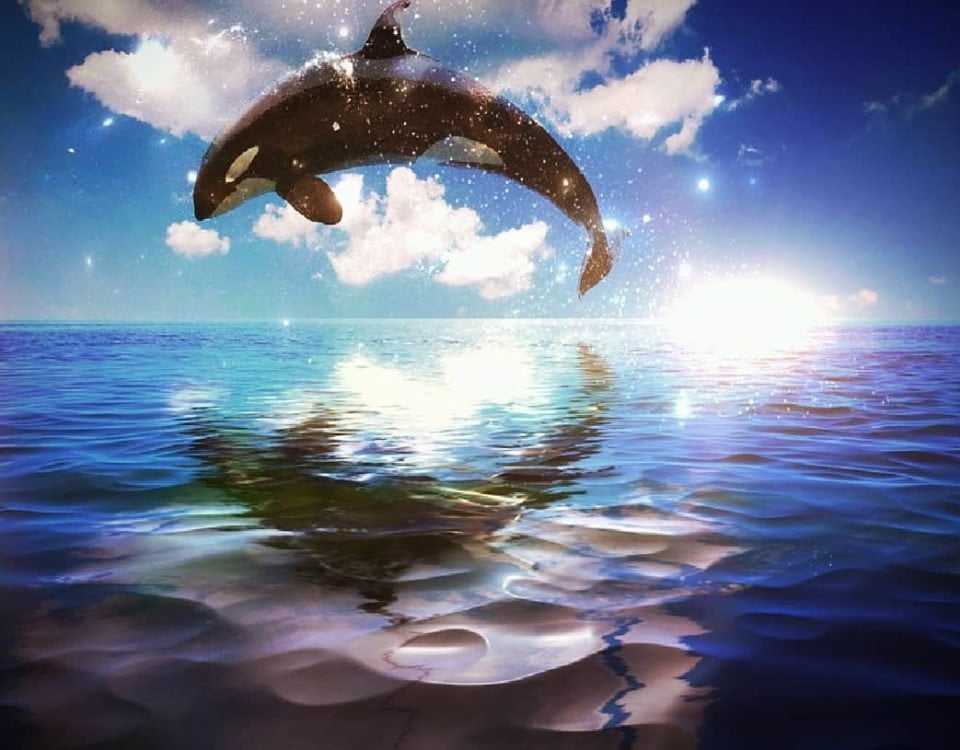 OKEx recorded over 8,000 Bitcoin whale operations in June