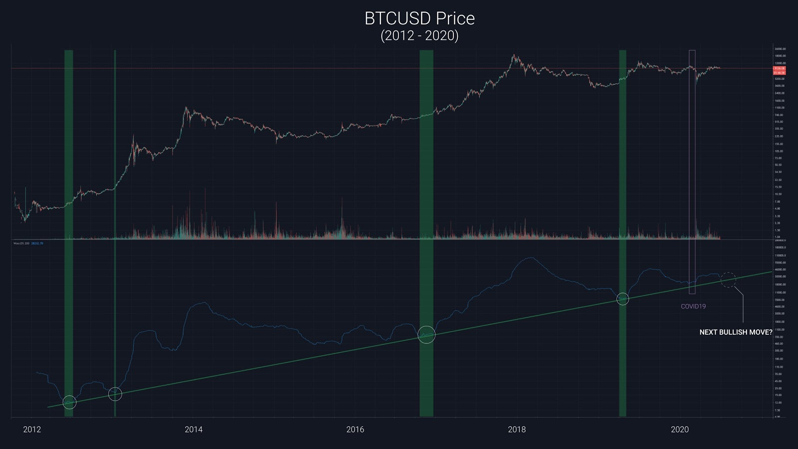 Bitcoin's weekly price chart with a new pricing model. Source: Willy Woo