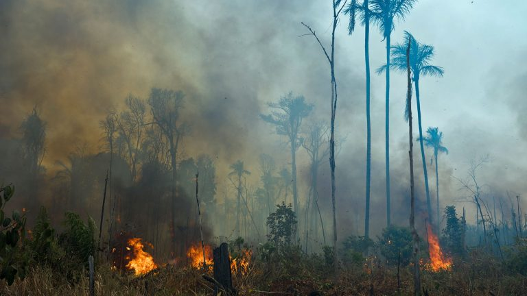 """Bolsonaro calls on the Amazon countries to """"fight back"""" against the """"lie"""" of the fires in the jungle"""