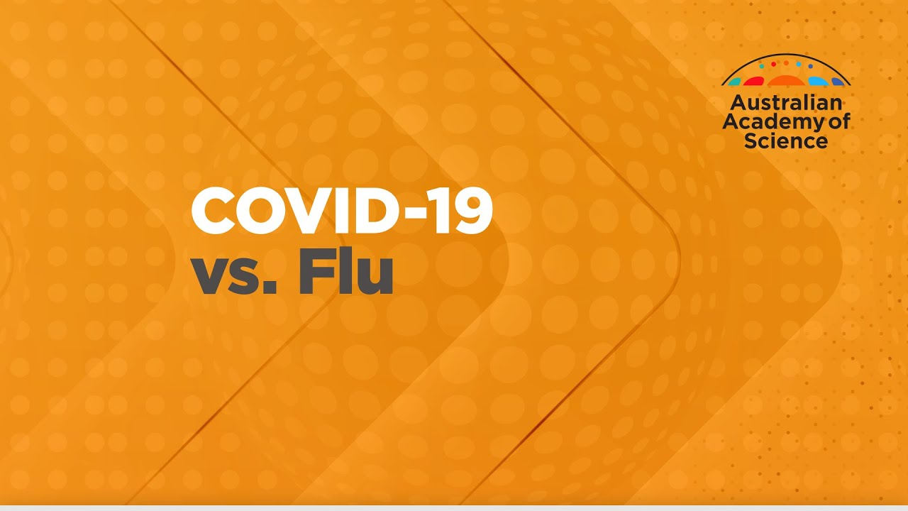 Differences Between Coronavirus Symptoms and Flu, Allergies, and Cold (Infographic)