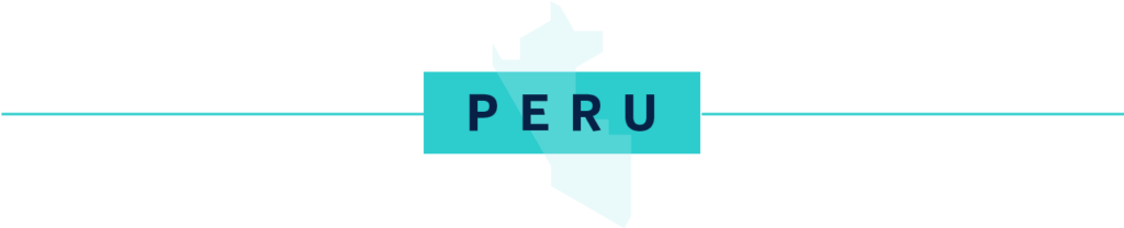 Fintech launches service for online purchases without a credit card in Peru