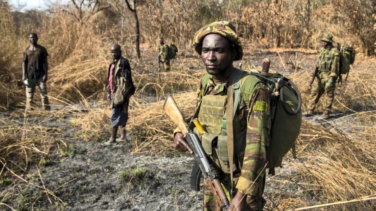 Five were killed in multiple attacks in the Darfur region of Sudan