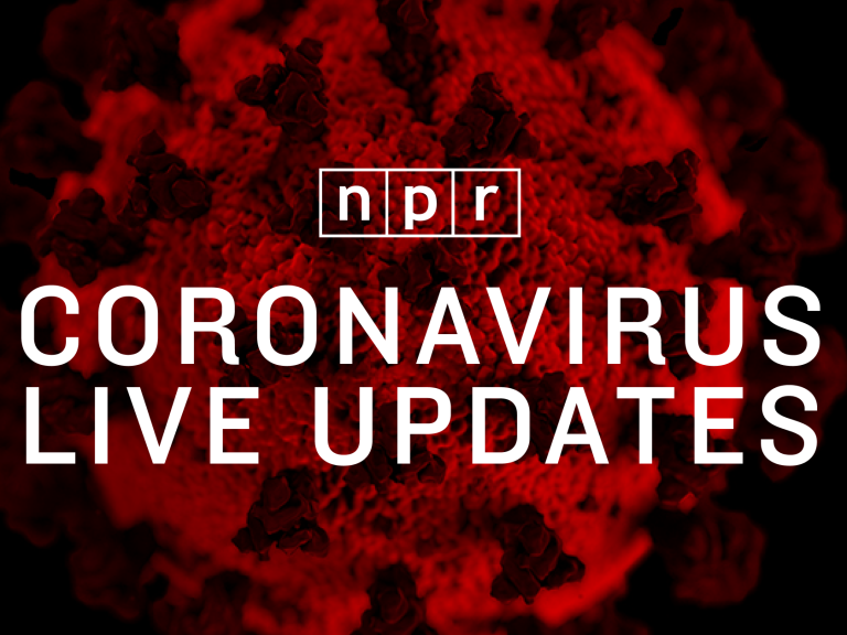 France registers a new daily maximum of infections of around 19,000 and exceeds 650,000 cases of coronavirus