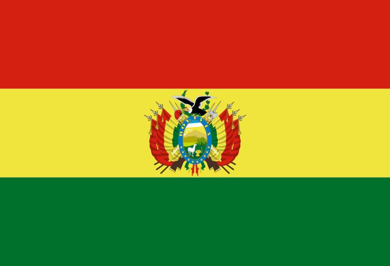 The TSE of Bolivia announces departmental and local elections for March 2021