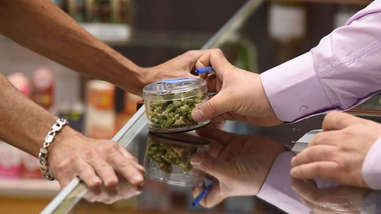 The Senate of Mexico approves the legalization of marijuana for medical and recreational uses