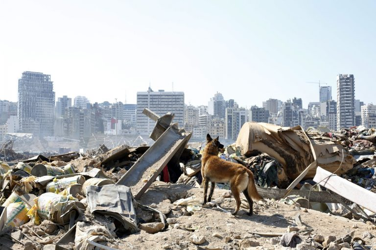 """UNICEF warns of Beirut's """"serious"""" needs after the explosion and calls for more humanitarian aid"""