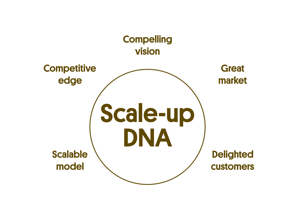 The competition for scalability and new markets is increasing